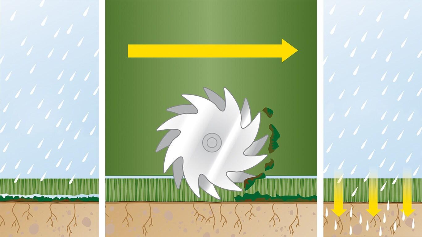 Vaarwel tegen mos: Om een gezond gazon te creëren en te behouden, is juiste zorg vereist. Dit omvat regelmatig verticuteren: het fysiek verwijderen van vervilting en mos, zodat voedingsstoffen in de bodem kunnen komen.